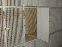 Guardabultos en el Refugio de Urriellu